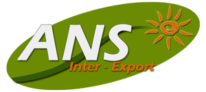 ANS Inter – Export