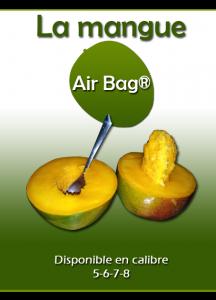 mangue-airbag